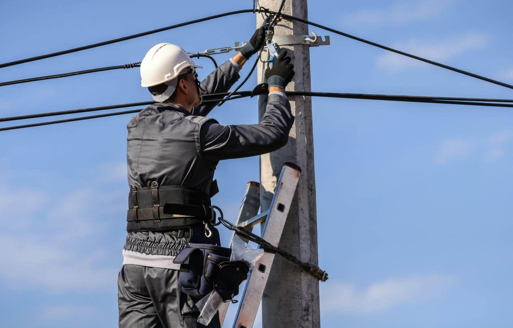 Une part importante des câbles de fibre optique sont construits et installés à grands frais à l'aide de fonds publics, pour ensuite être utilisés par des fournisseurs d'accès Internet privés, souligne l'auteur.