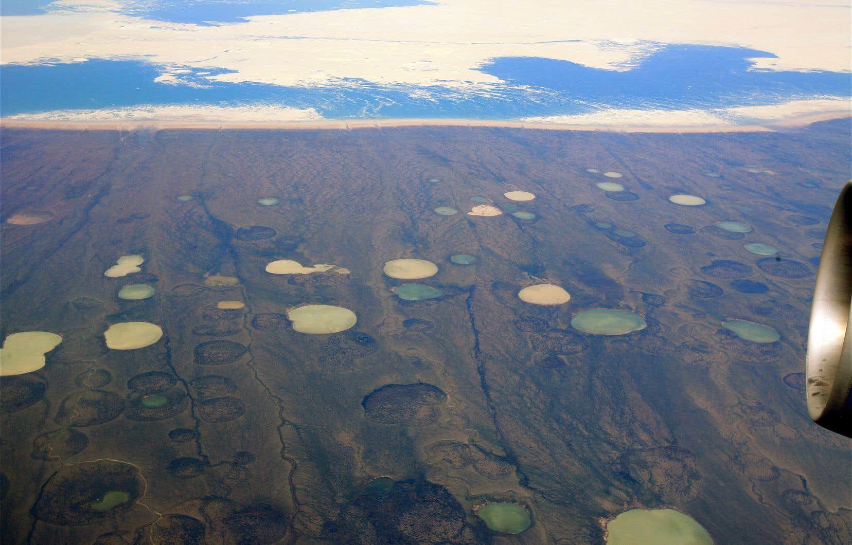 Pour leur récente étude, les chercheurs ont prélevé, entre 2002 et 2016, des centaines d'échantillons de 253 étangs situés dans des régions circumpolaires.