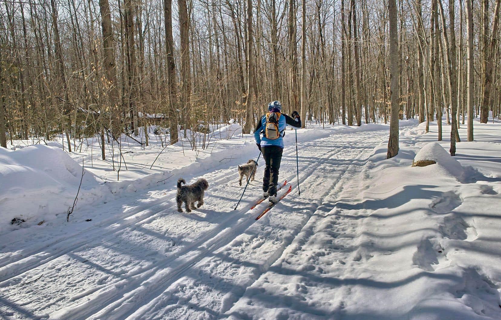 Partout en région, les infrastructures consacrées au plein air — comme les sentiers pour le ski de fond — ont grand besoin d'entretien.