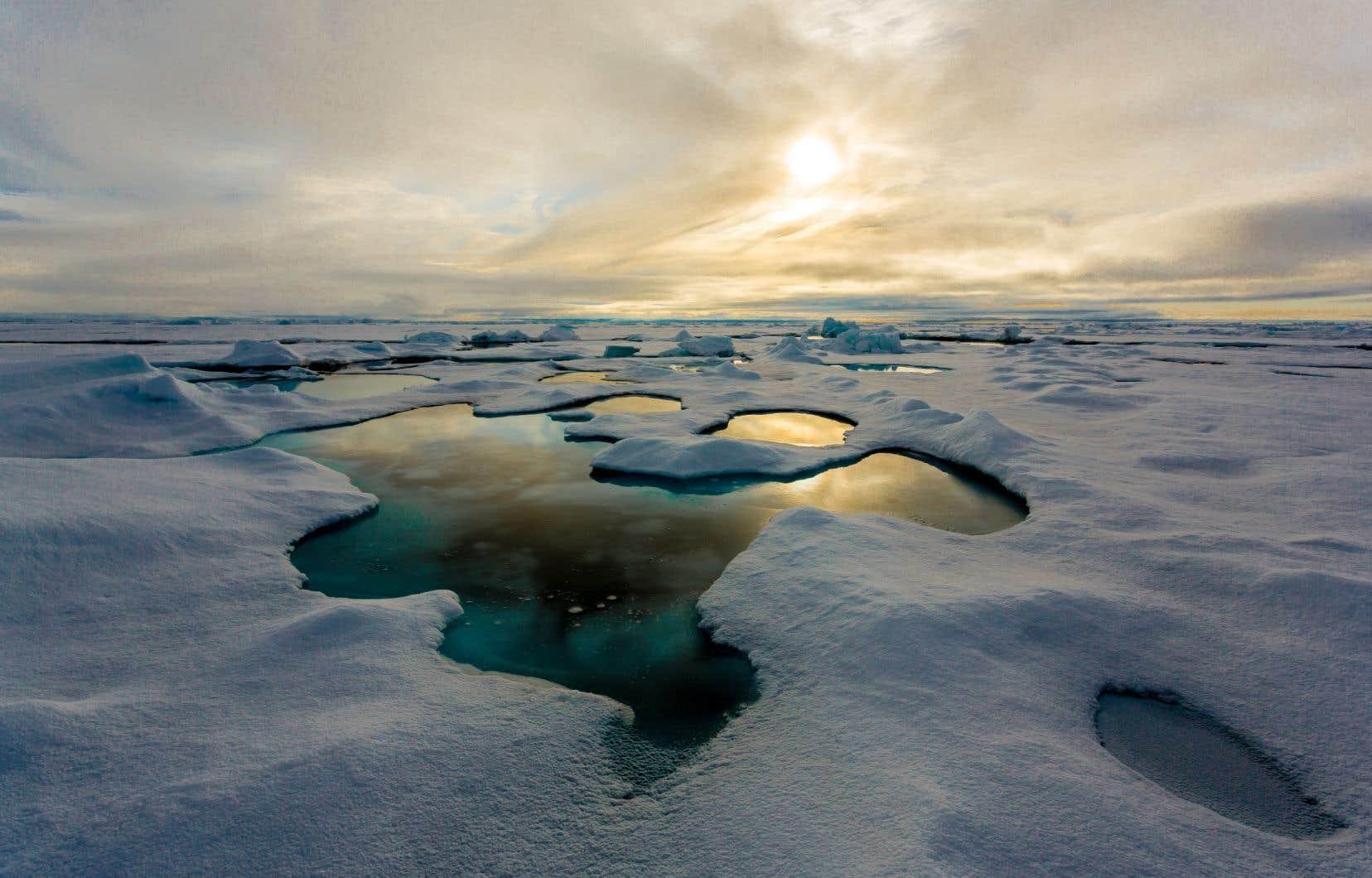 Les chercheurs de l'Institut allemand Alfred Wegener (AWI) ont recueilli des échantillons de glace polaire dans le cadre de trois expéditions menées en 2014 et 2015.