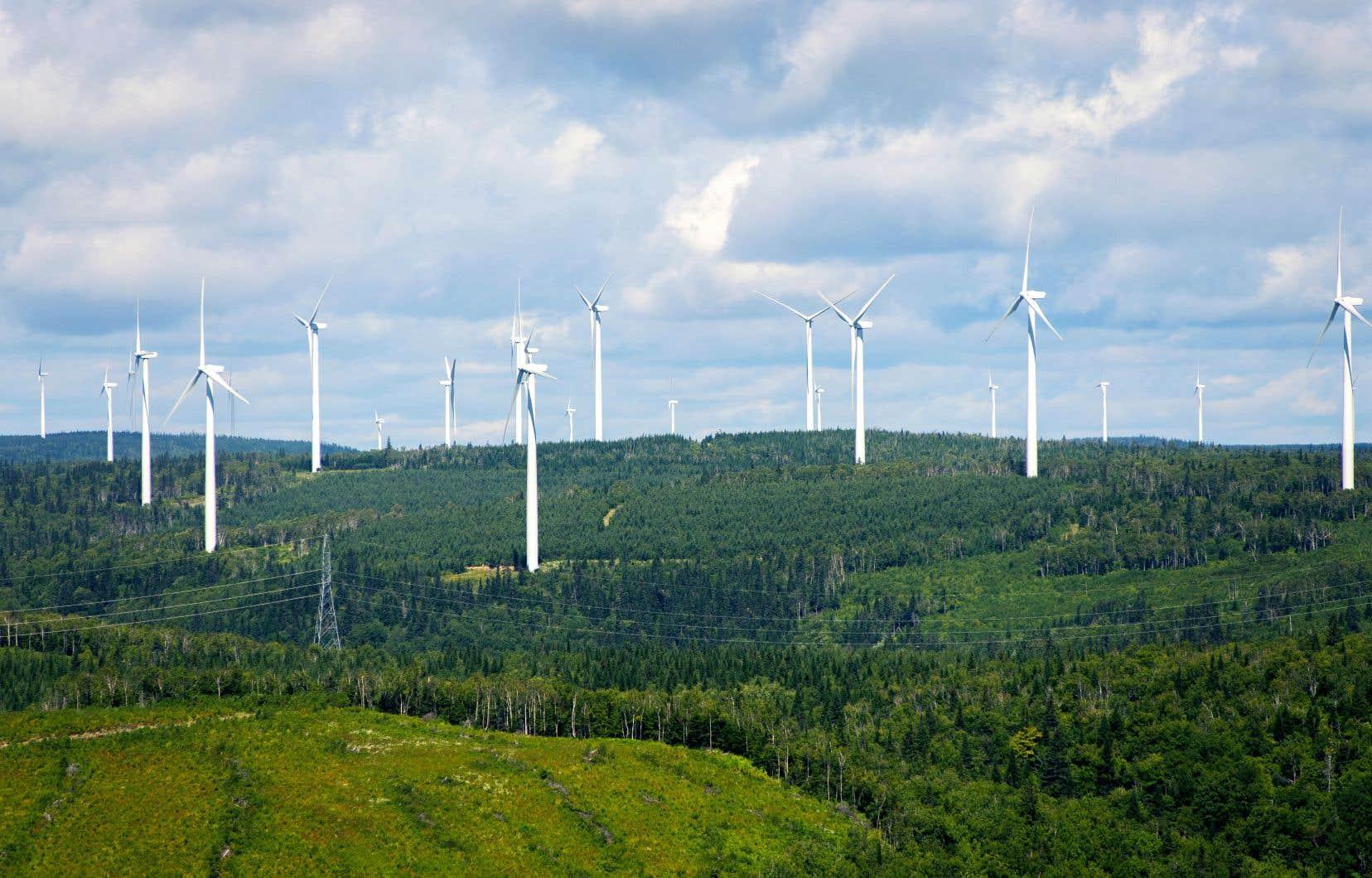 Le parc éolien de Carleton, en Gaspésie. L'éolien représente environ 6% de la production d'électricité du réseau d'Hydro-Québec, souligne l'auteur.