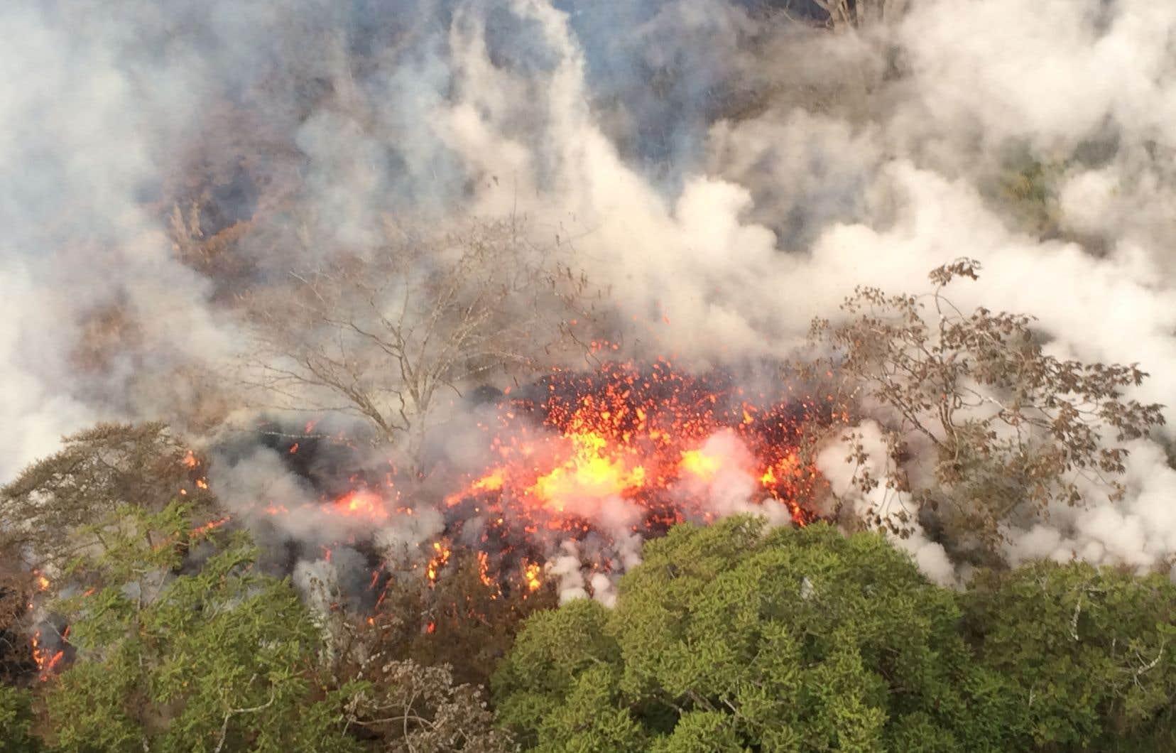 Une explosion dans un cratère du volcan hawaïen Kilauea très tôt jeudi a propulsé un épais panache de cendres dans le ciel.