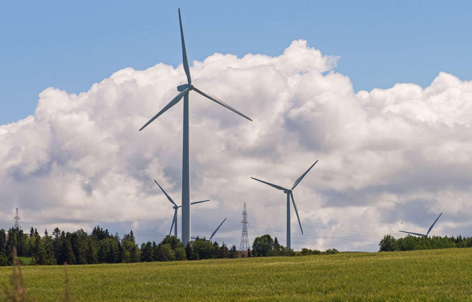 Selon les auteurs, l'énergie éolienne est appelée à jouer un rôle important dans la transition énergétique. Sur la photo, le parc éolien de Cap-Chat, en Gaspésie.