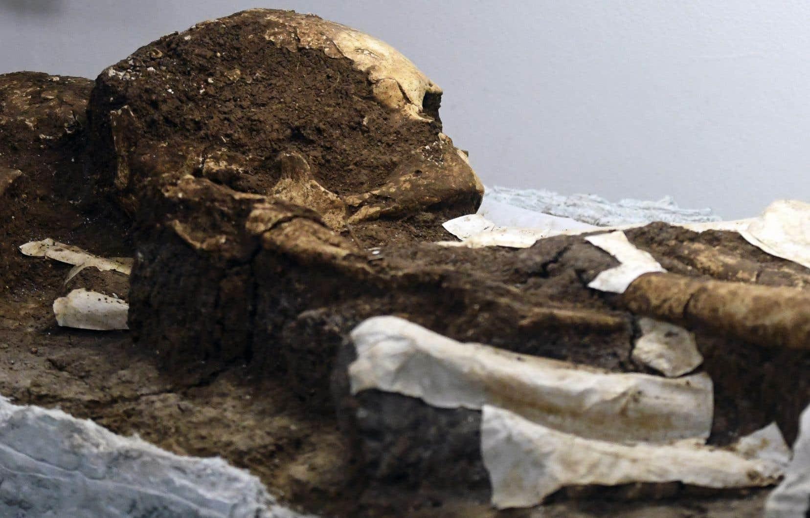 Trouver le virus qui sévissait il y a plusieurs milliers d'années «pourrait permettre de prédire son avenir».
