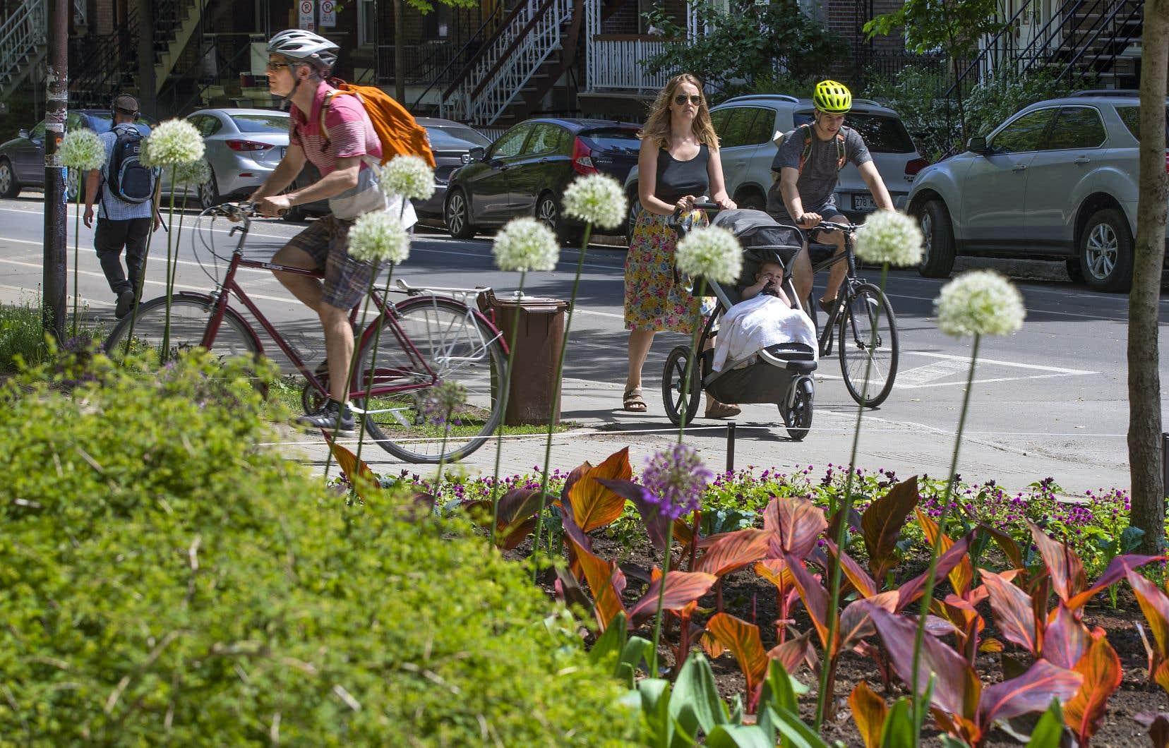 L'administration Plante souhaite augmenter la part modale du vélo à 15% dans 10ans.
