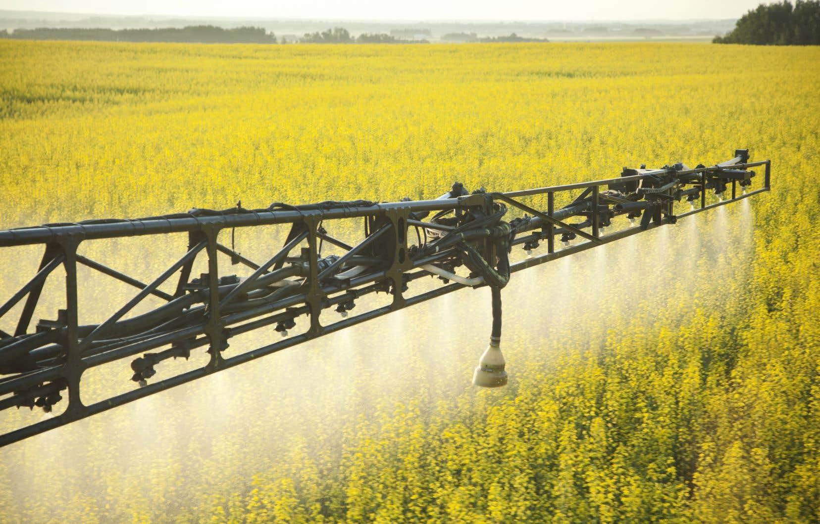 Du sort du glyphosate, sur la sellette en Europe, à celui des organismes génétiquement modifiés, l'avenir du secteur dépend largement des futures politiques en environnement et de sécurité alimentaire.