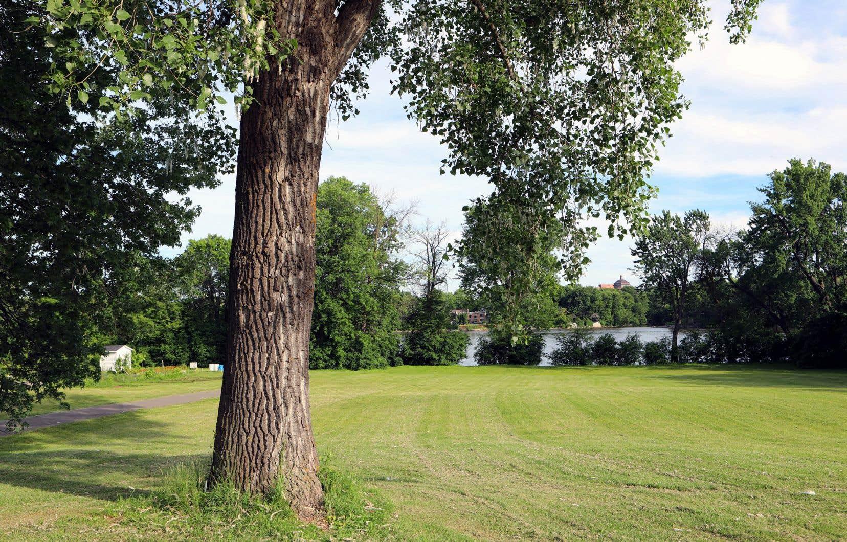 La Ville de Laval examine la possibilité d'acquérir le terrain de 42000 mètres carrés situé en bordure de la rivière des Prairies.