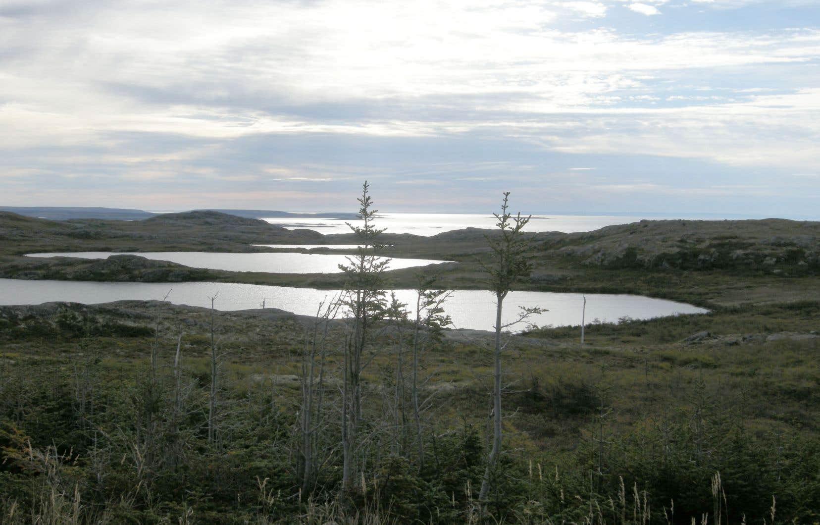 Paysage de bout du monde à l'ouest de Blanc-Sablon, une petite municipalité située à la frontière de la province de Terre-Neuve-et-Labrador. Un peu plus de 1000 personnes y vivent.