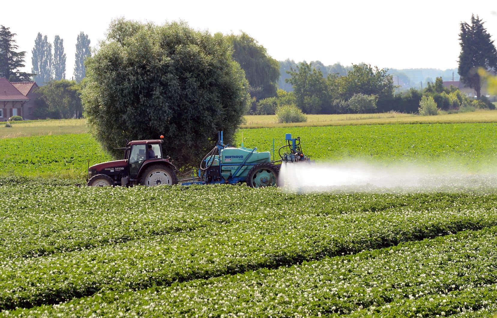 Un pesticide peut être utilisé pour combattre un ennemi déjà présent ou de manière «préventive» pour empêcher cet ennemi de s'approcher.