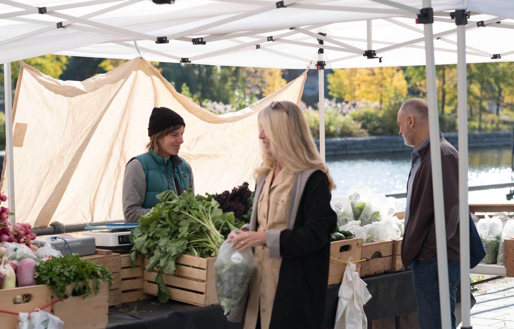 Un marché fermier met davantage l'accent sur les produits uniquement d'ici. Il y en a de plus en plus partout au Québec. C'est le cas du marché des Éclusiers, jadis une terrasse branchée du Vieux-Port de Montréal. Il célèbre la troisième saison de son marché fermier cette année.