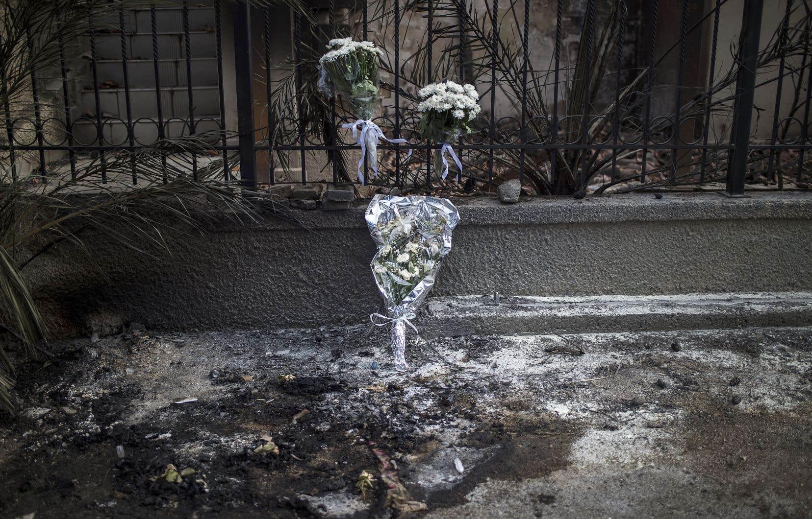 Près d'une semaine après le déclenchement des incendies les plus mortels de son histoire récente, avec un bilan de 82 morts, la Grèce panse encore ses plaies alors que les secours recherchent toujours les corps de ceux dont on reste sans nouvelles.