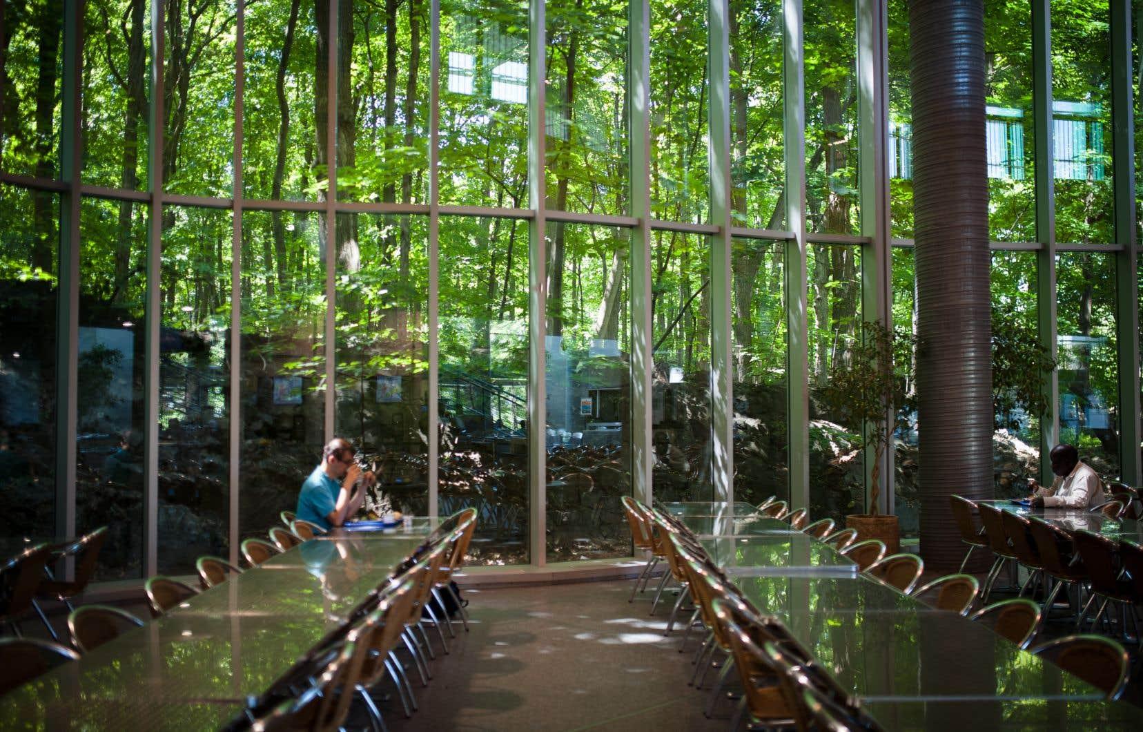 Œuvre phare de l'architecte montréalais décédé en 2017, le bâtiment de HEC jongle avec les contrastes. Extérieur versus intérieur, monumental versus détails, façade industrielle versus dos vert...
