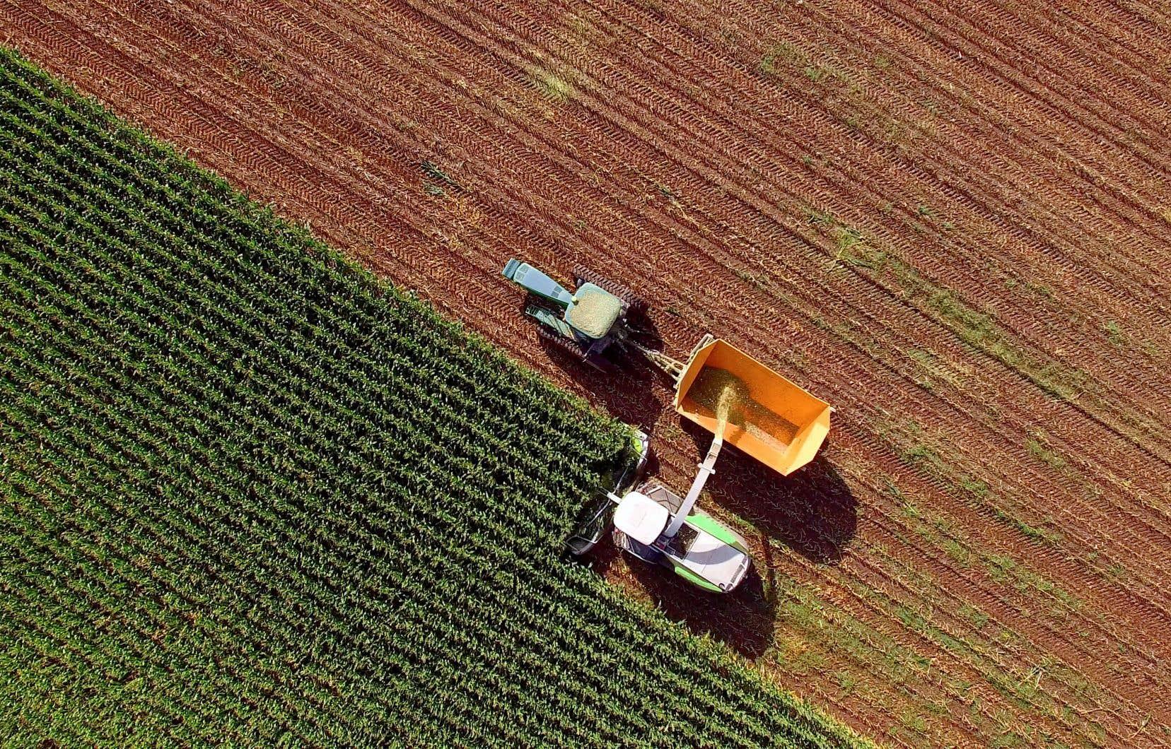 Les agriculteurs peuvent très bien se protéger contre des infestations sans employer les deux néonics dont il est question, explique Scott Kirby, de l'Agence de réglementation de la lutte antiparasitaire.