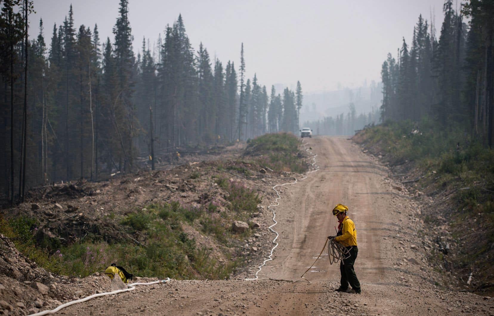 Les feux de forêt situés près des lacs Nadina, Shovel et Tesla, dans la région de Bulkley-Nechako, sont les plus importants de la province.