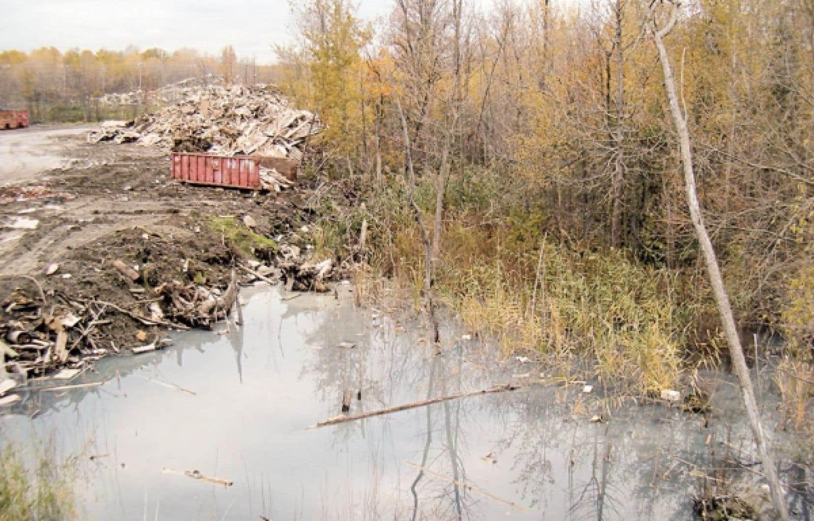 Des milieux humides sont parfois — trop souvent — remblayés pour faire place à de nouvelles constructions domiciliaires, ou encore ils deviennent l'extension de dépotoirs.