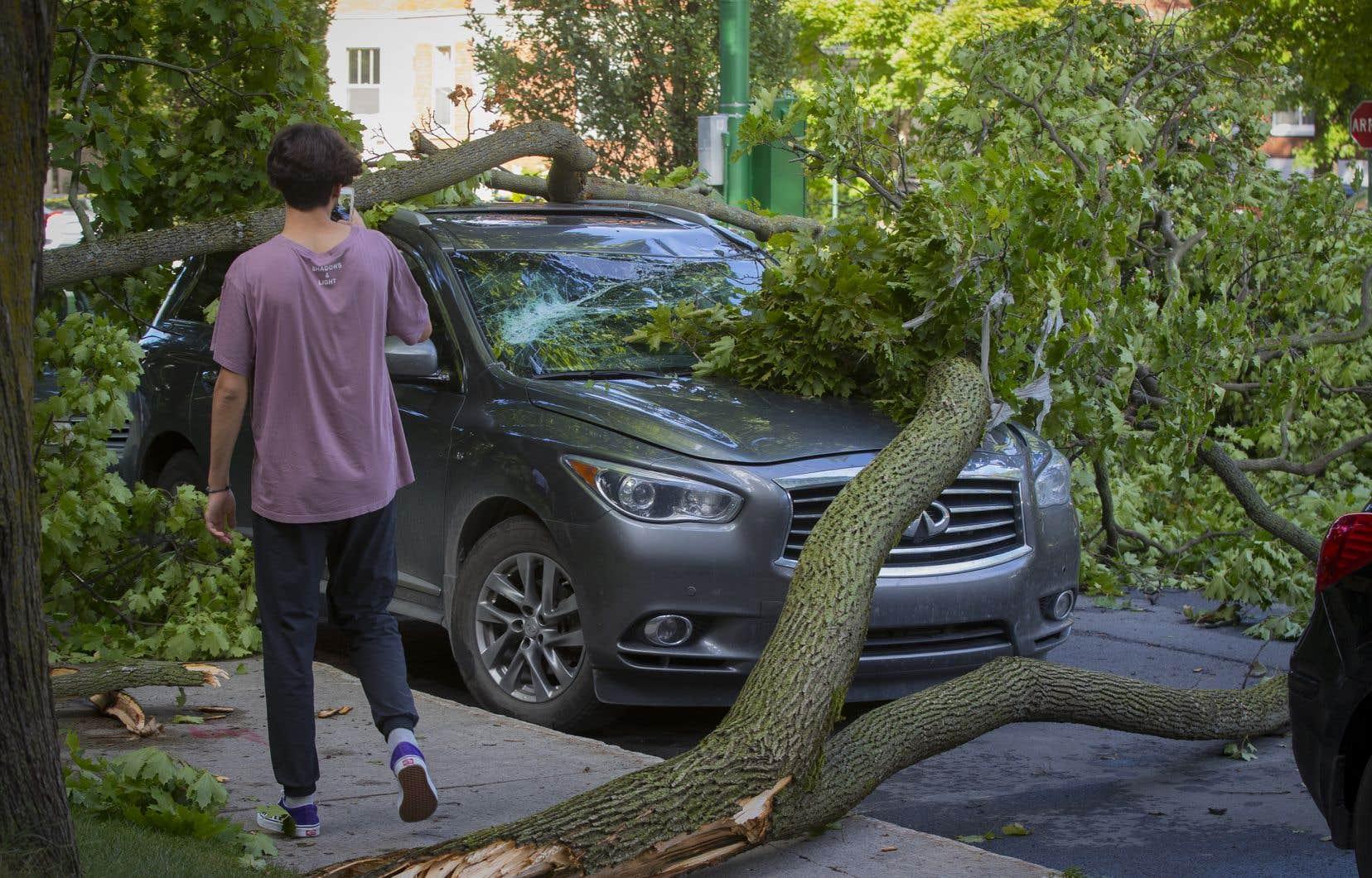 Les orages et vents violents ont causé mercredi après-midi des pannes d'électricité, notamment dans la région de Montréal.
