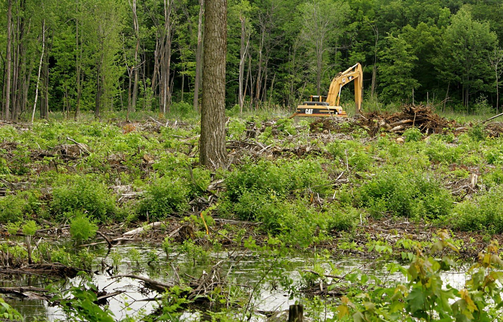 «Devant ce qui nous attend, nous avons besoin d'un ministère de l'Environnement fort, avec d'importants moyens, influent et capable de passer à l'action», estime l'auteur.