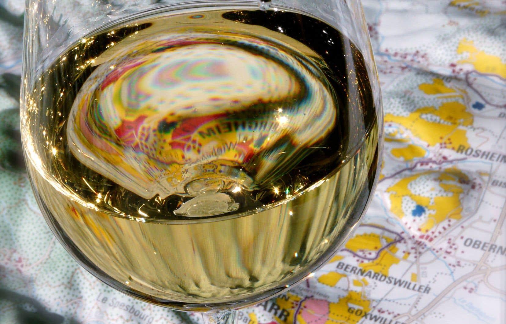 Sait-on parler de vin? Je veux dire monter le cheval des mots pour l'inviter au petit trot, voire au grand galop d'un descriptif aussi bridé que débridé?