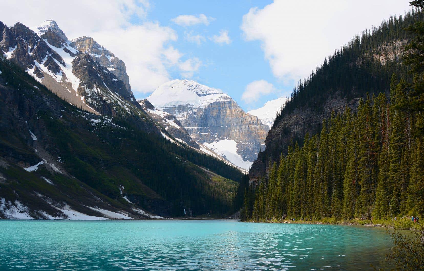 Le lac Louise, un des bijoux des Rocheuses, qu'il ne faut manquer pour rien au monde. Arrêt obligé.