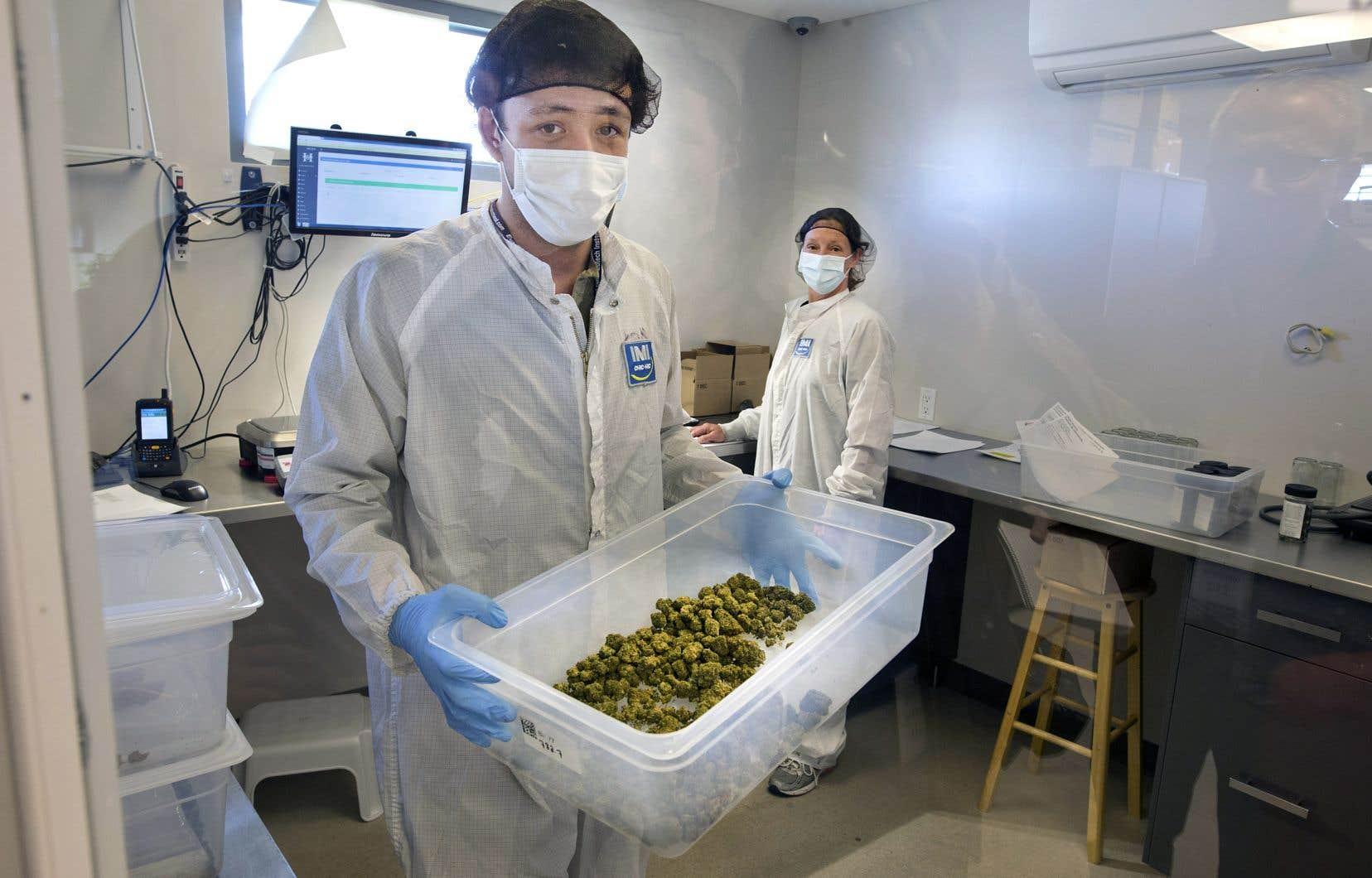 La Société québécoise du cannabis dit faire totalement confiance à ses fournisseurs pour ce qui est de la qualité des produits.