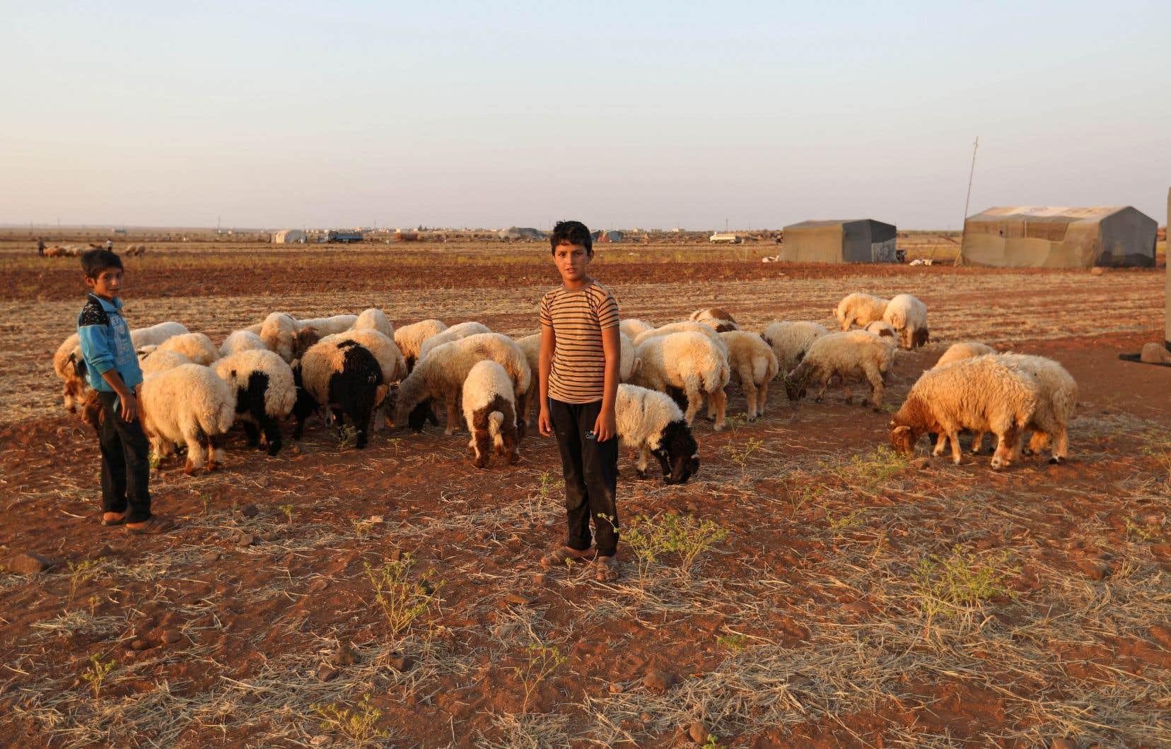 Dans le cas de la guerre civile en Syrie, le manque de terres agricoles aurait, selon M. Guibeault, provoqué une migration des campagnes vers les villes, augmentant ainsi les tensions sociales.