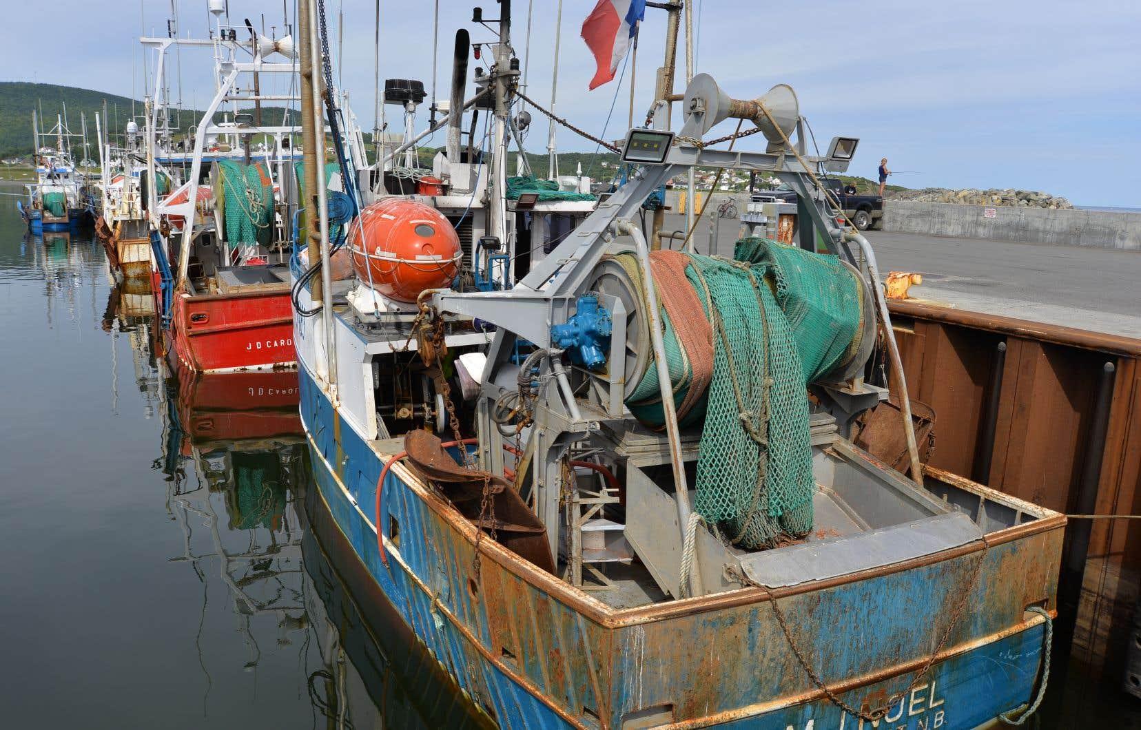 L'équipement de pêche abandonné dans l'eau représente un plus gros problème que les pailles, les bouteilles ou les sacs d'épicerie.