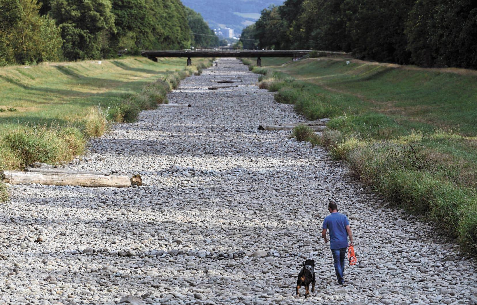 Un Allemand promenait son chien sur le lit asséché de la rivière Dreisam dans le village de March, près de Fribourg, au mois d'août.