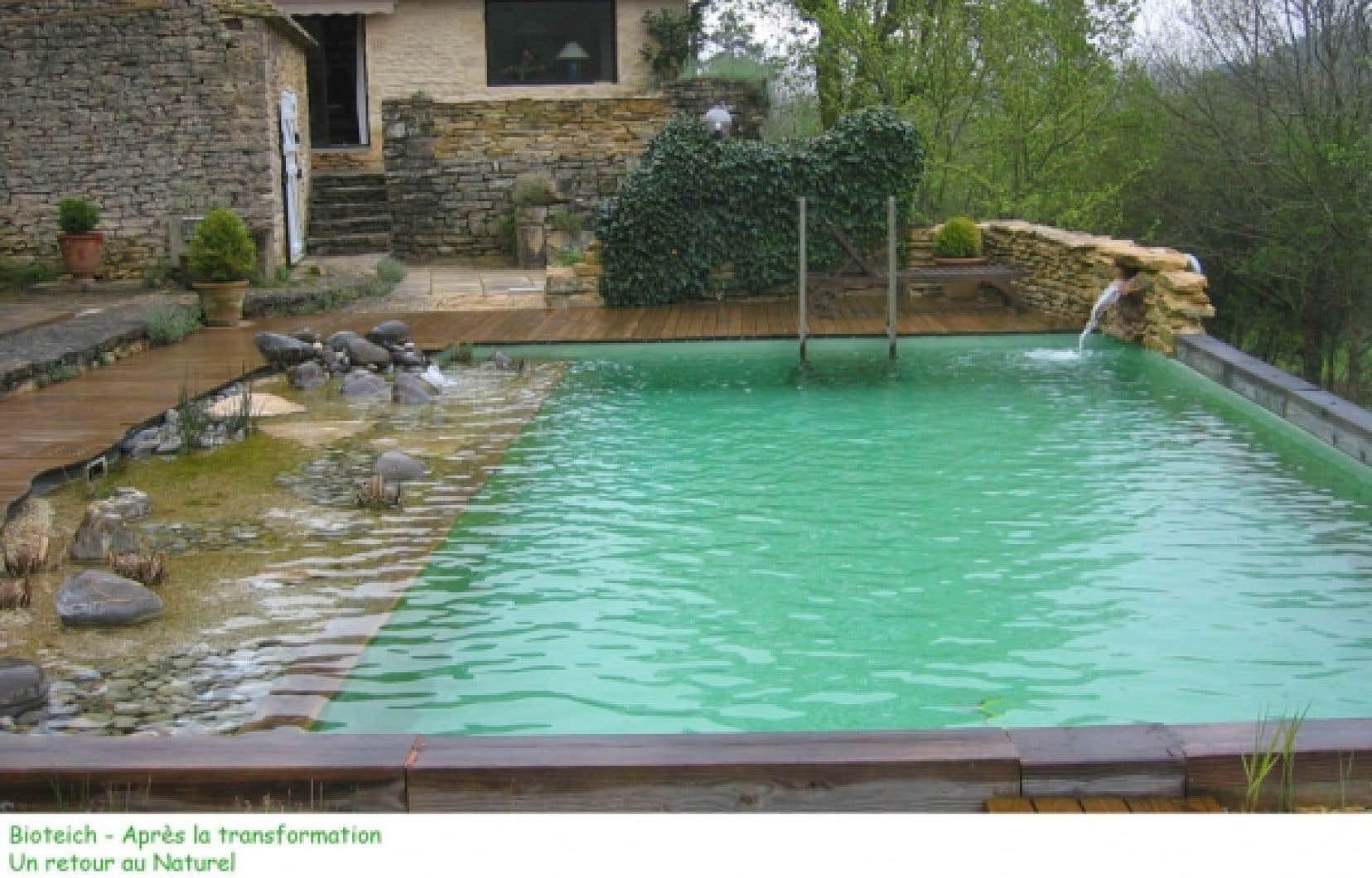 Prix piscine naturelle bioteich for Prix d une piscine naturelle