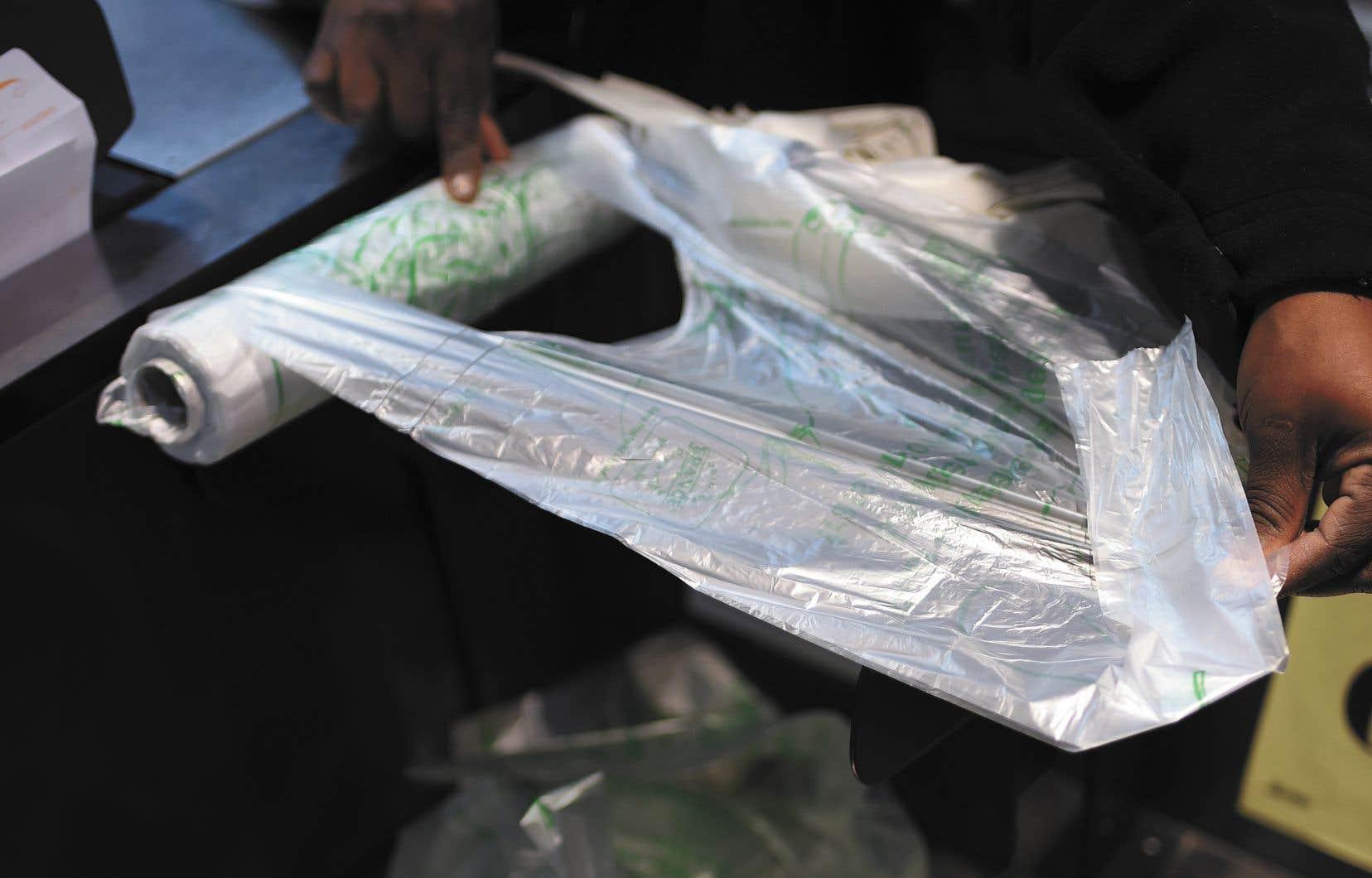 Les sacs en plastique léger servant à emballer les aliments en vrac comme les légumes et les fruits dans les marchés d'alimentation du Québec continuent d'être une importante source de pollution.