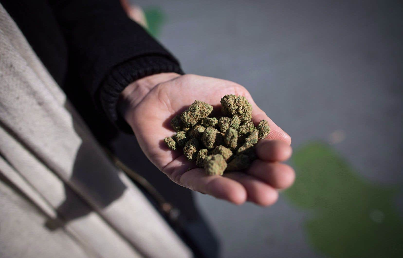 La Corée du Sud et le Japon ont adopté une ligne dure et menacent de poursuivre devant les tribunaux, dans leurs pays, les membres de leur communauté qui succomberaient à l'appel du cannabis légal canadien.