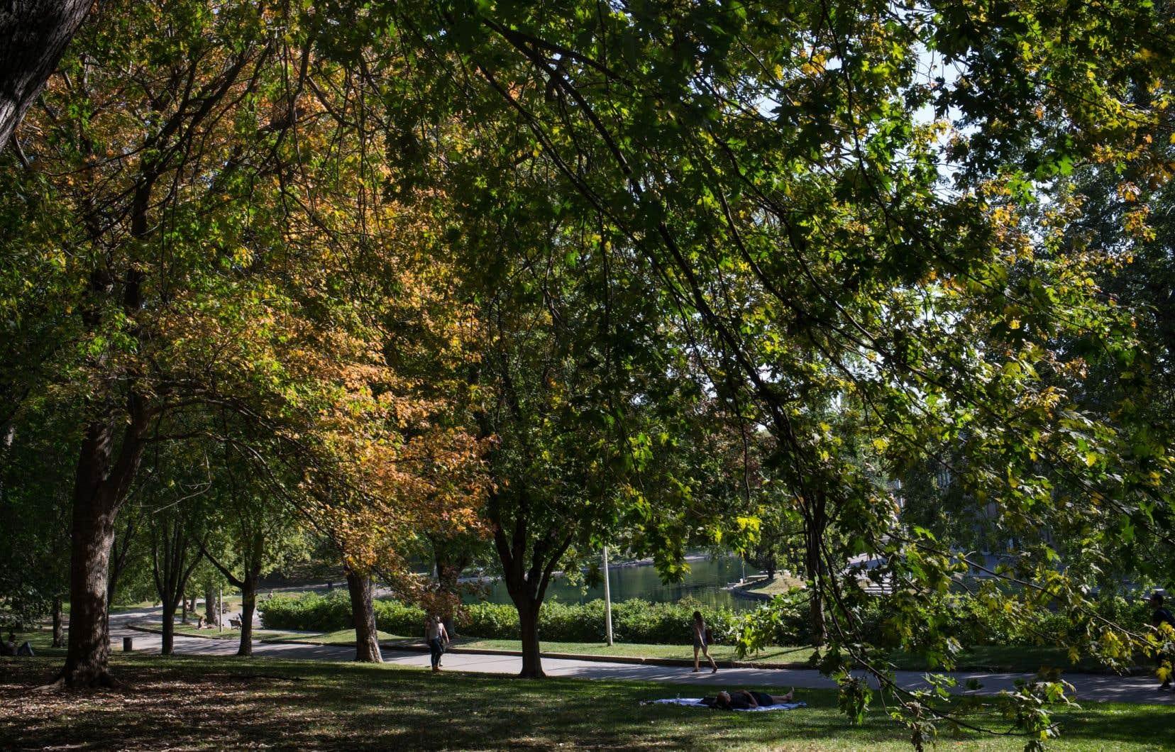 Les bassins et la fontaine, au coeur de ce parc emblématique de la métropole, seront rénovés.