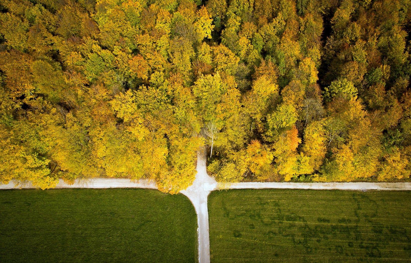 La gestion continue de l'environnement touchera notamment aux domaines de la foresterie, de la santé des océans et de la surveillance des pipelines.