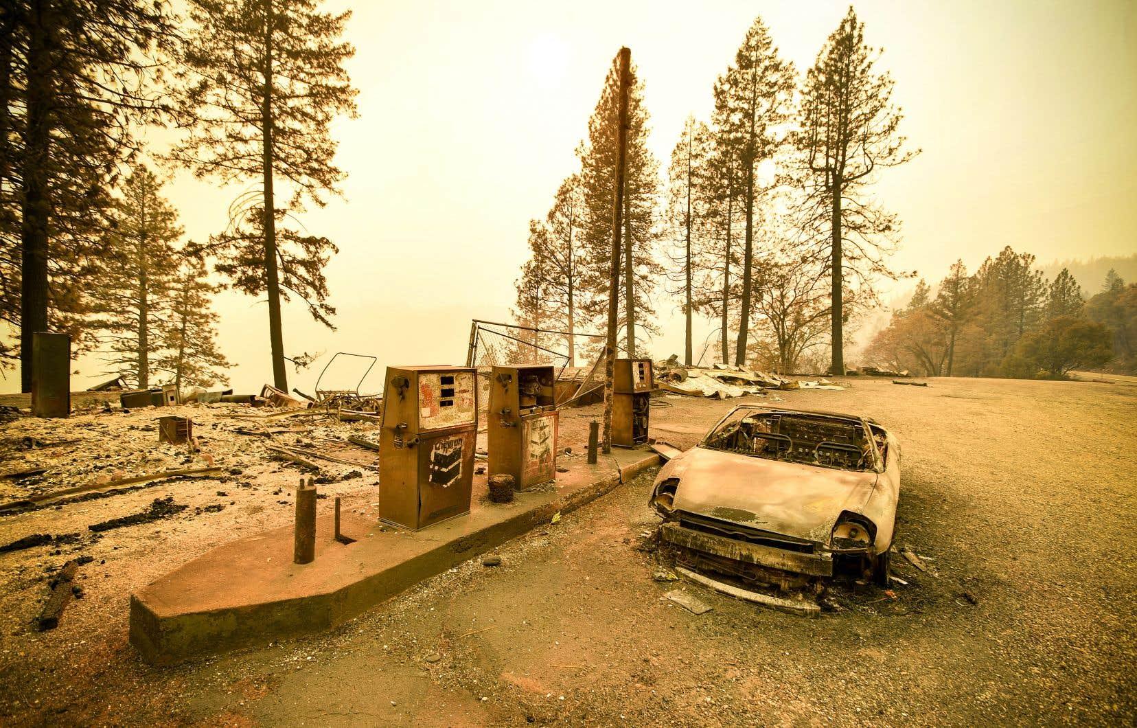 La série d'incendies de forêts qui ravagent la Californie cette année est historique. À ce jour, quelque 6750 km² ont été brûlés lors de 7579 incendies. Les autorités font état de 71 morts et de plus de 1 000 personnes disparues.