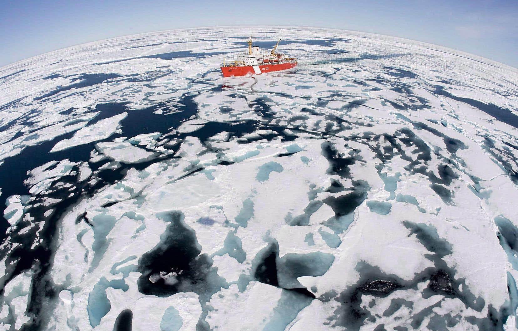 Les eaux situées au nord de l'île de Baffin deviendront bientôt la plus grande zone protégée du Canada.