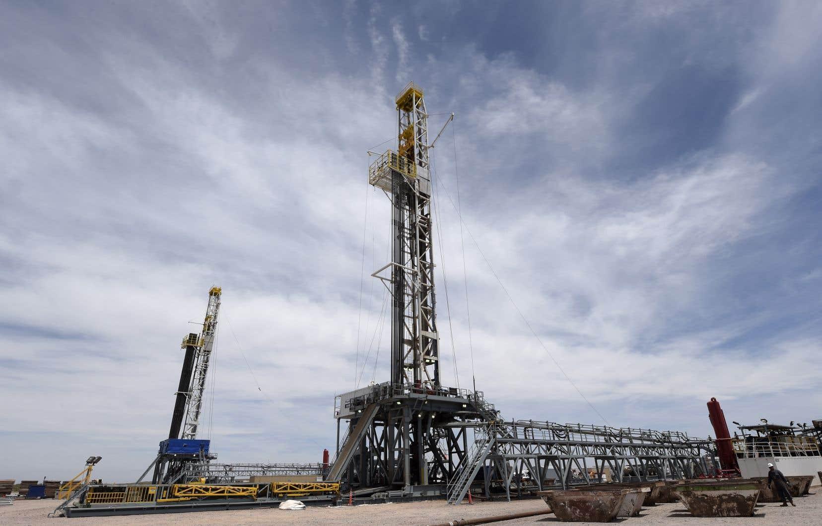 Les Mapuches ont déposé une plainte pour pollution dans le sud-ouest de l'Argentine, où se trouve le gisement stratégique de Vaca Muerta, considéré comme l'un des plus importantes gisements de gaz de schiste et de pétrole de schiste.