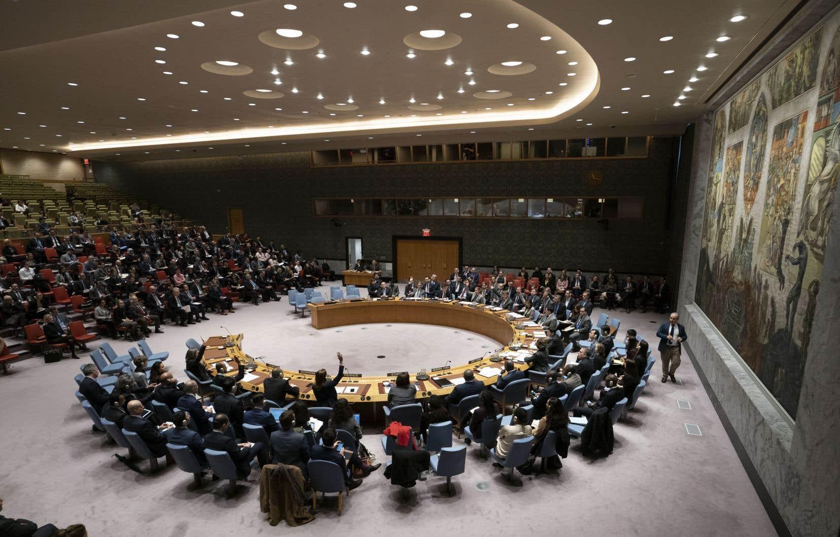La France et les Pays-Bas sont à l'origine des négociations sur la résolution.