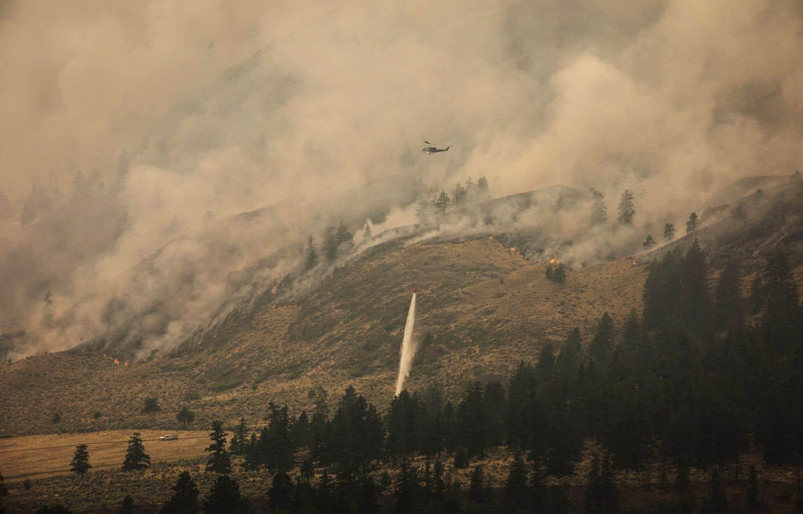 Le nombre record d'incendies de forêt en Colombie-Britanniquea eu d'importantes conséquences sur les Canadiens, selon Environnement et Changement climatique Canada.