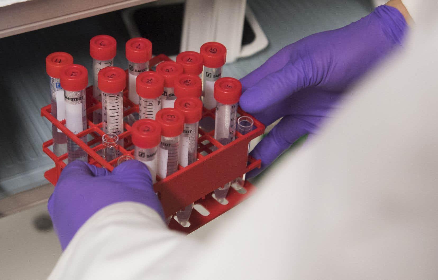 Le nouveau test épigénétique permettra de trier les femmes ayant appris qu'elles sont infectées par le VPH et donc d'identifier celles qu'il faudra surveiller.