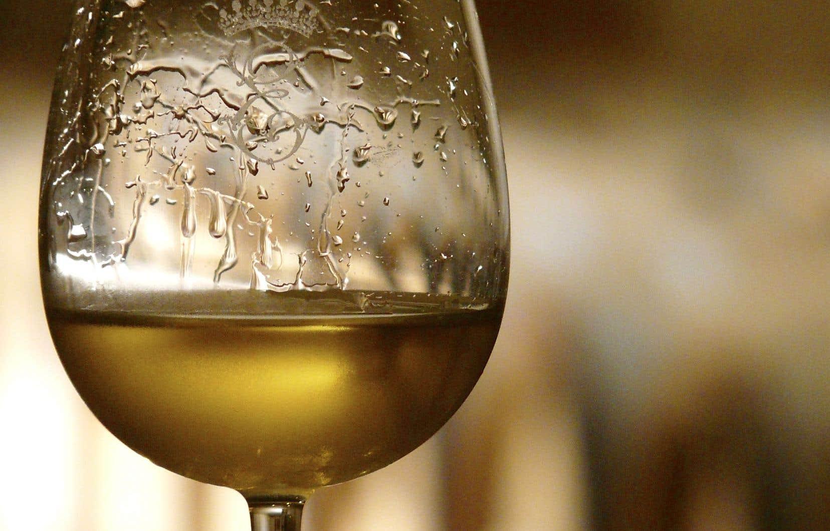 La réappropriation du vin à la source doit se faire en fonction de soi et de ses goûts.