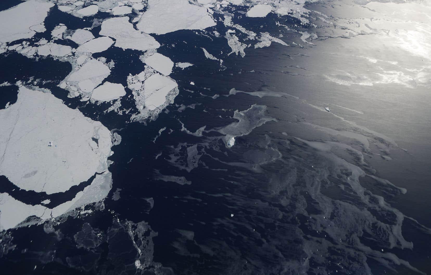 L'amoindrissement des glaces de l'Antarctique est responsable d'une montée de 1,4 cm du niveau des océans de la planète entre 1979 et 2017.