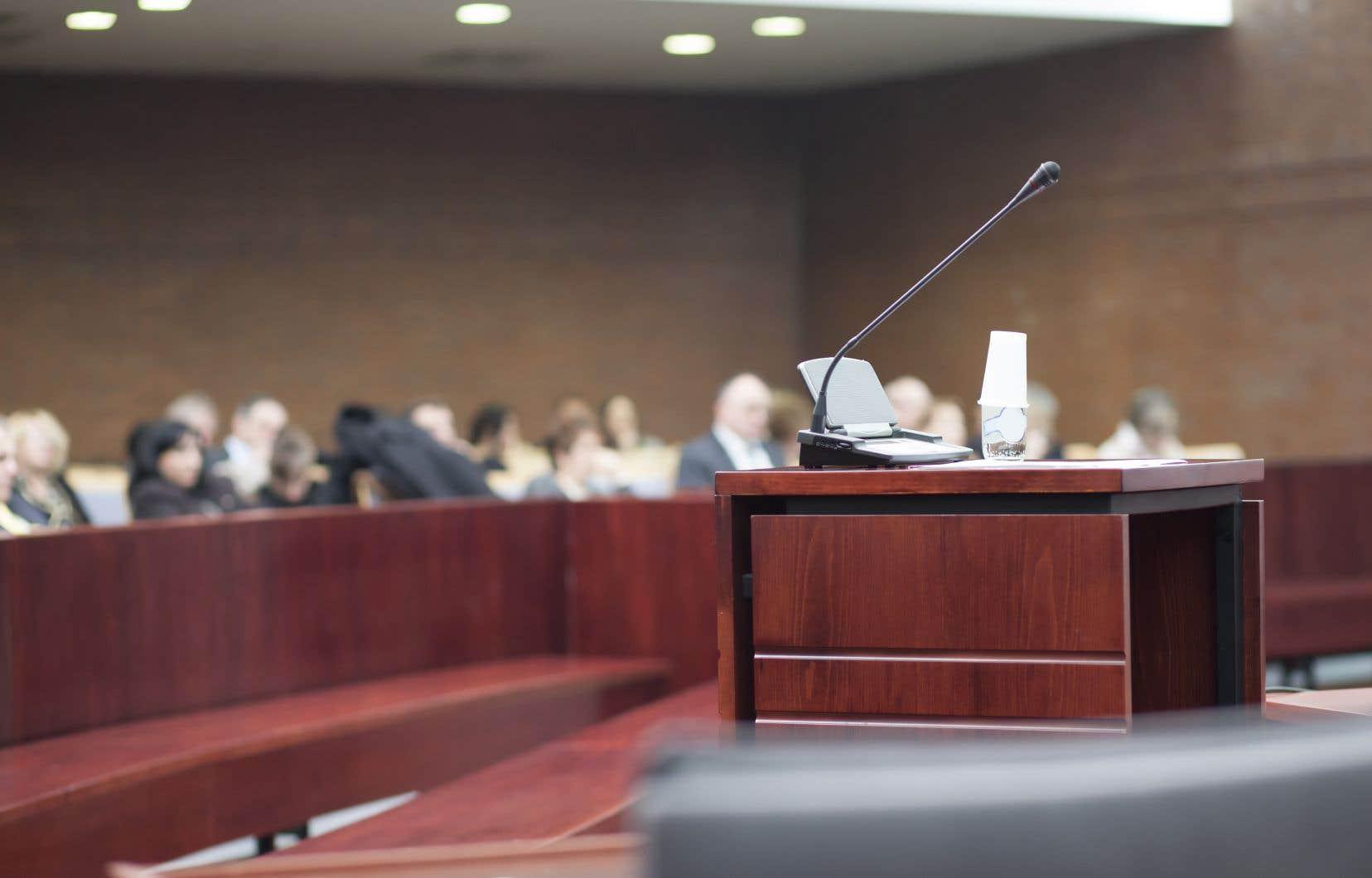 Un tel tribunal serait une réponse potentielle au faible taux de confiance qu'accordent les victimes de violence sexuelle, ainsi que la population en général, à la manière dont le système de justice pénale traite les cas de violence sexuelle.