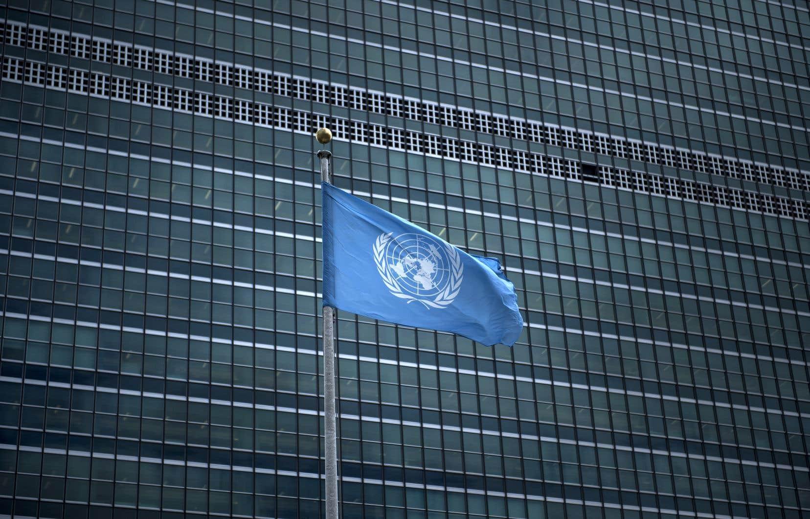 <p>Certains employés de l'ONU ont également déclaré avoir subi des gestes déplacés.</p>