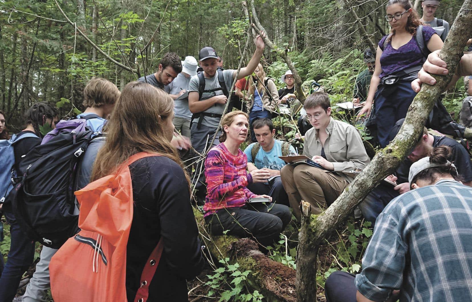 <strong>Évelyne Thiffault </strong>entourée de ses étudiants de l'Université Laval<br /> lors du cours « Excursion en écologie forestière »