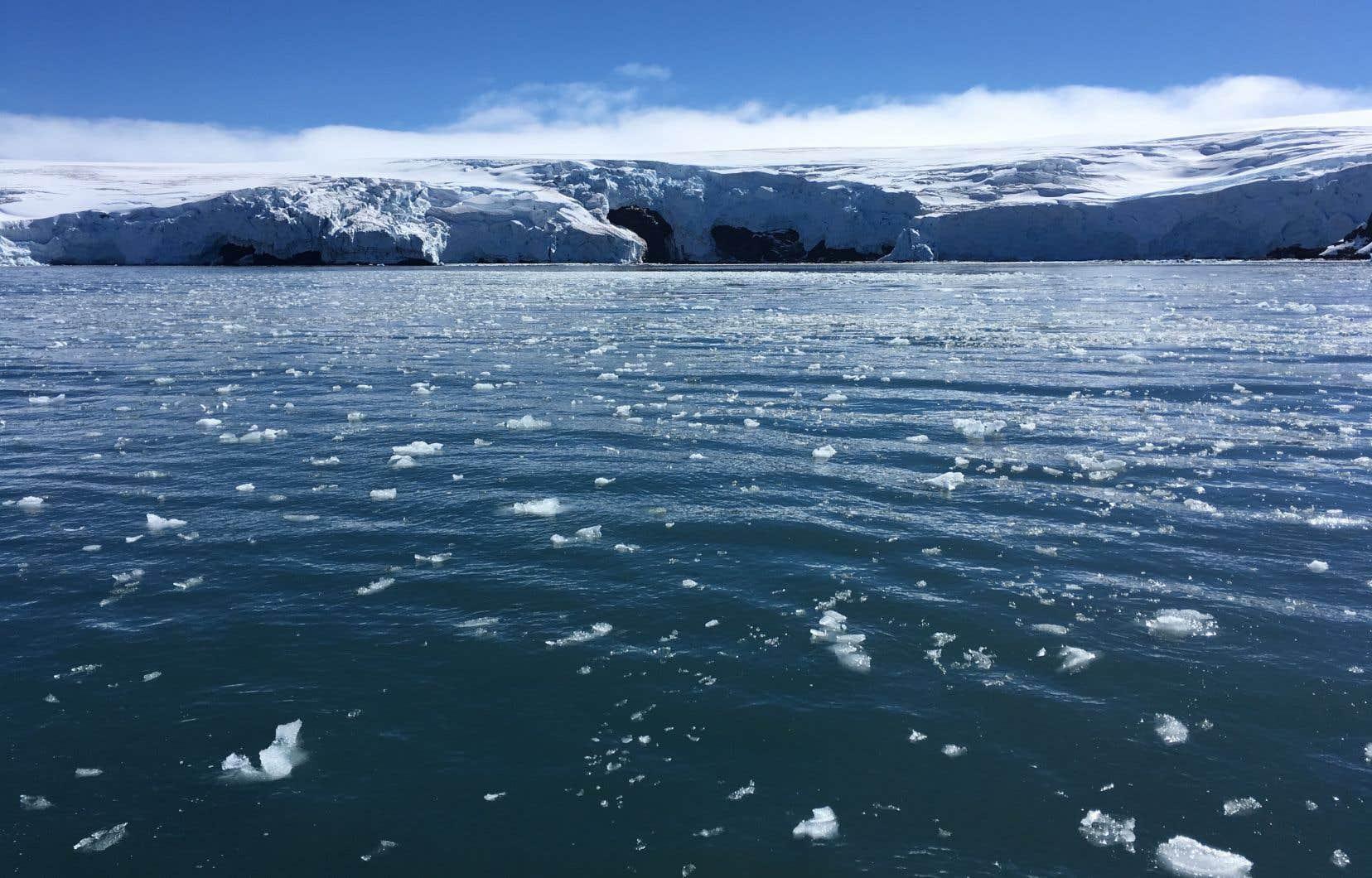 Des milliards de tonnes d'eau issues de la fonte des glaces risquent d'affaiblir les courants océaniques.