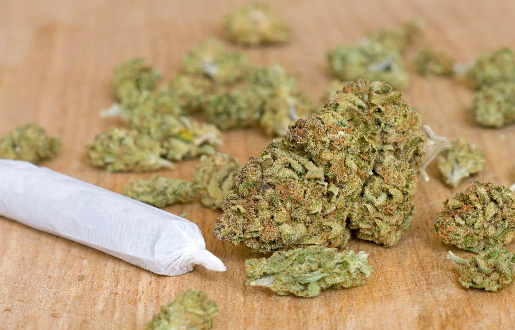 Mardi, Québec a lancé les consultations sur le projet de loi de la CAQ visant à resserrer l'encadrement du cannabis.