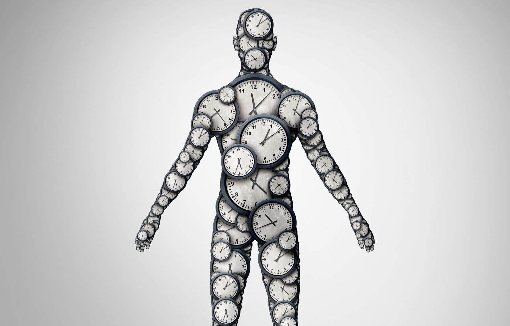 Nous savons depuis de nombreuses années que notre corps est sous l'effet d'une horloge biologique. On sait maintenant qu'elle n'est pas seule pour exécuter les nombreux mécanismes du corps humain.