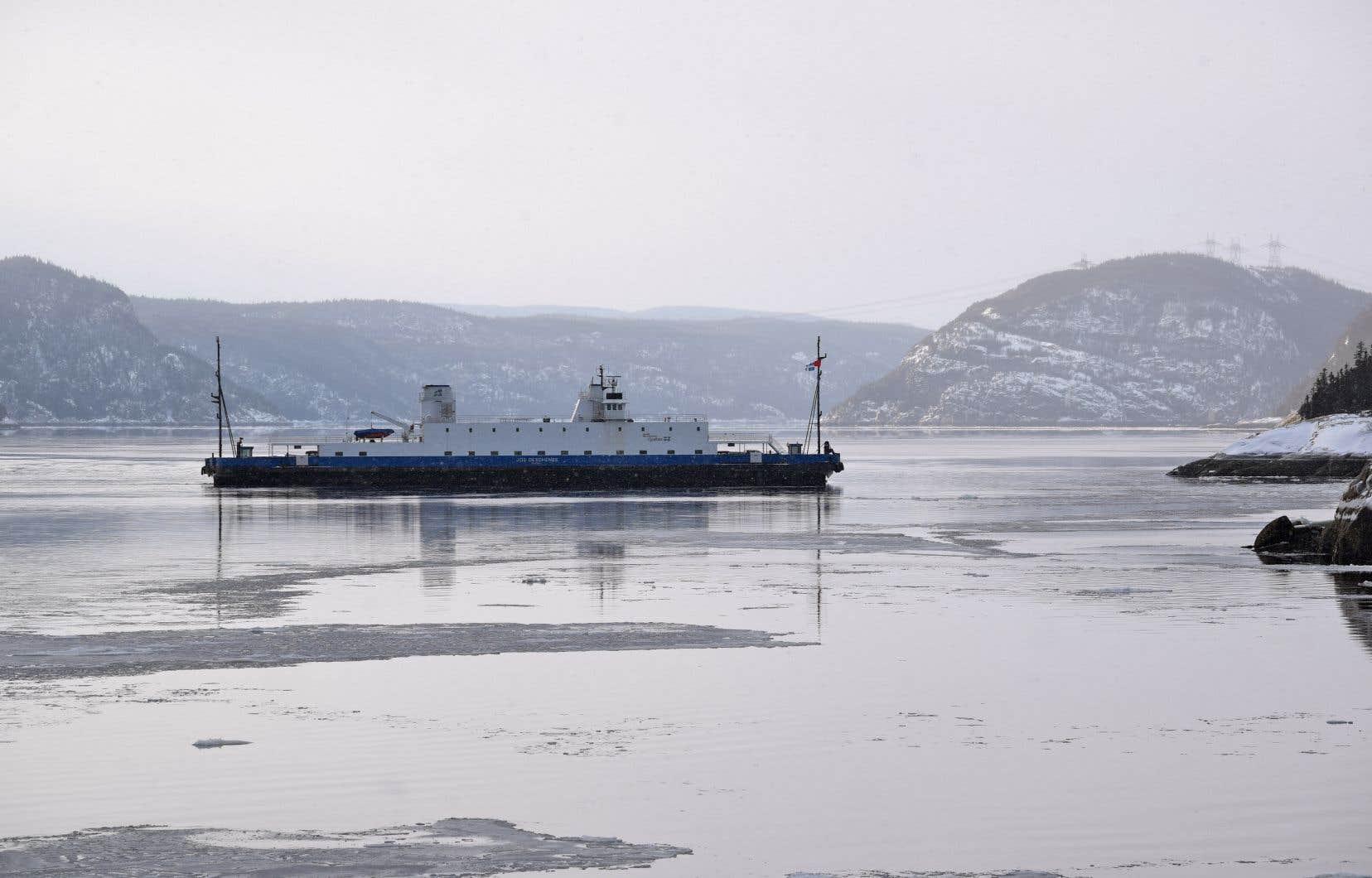 L'embouchure du Saguenay est considérée comme faisant partie de l'habitat essentiel du béluga du Saint-Laurent.