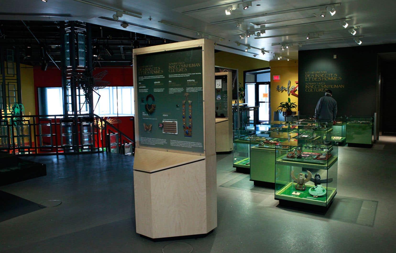 Le projet permettra au public de vivre une nouvelle expérience scénographique et participative à l'Insectarium dont la superficie sera 68% plus grande qu'actuellement.