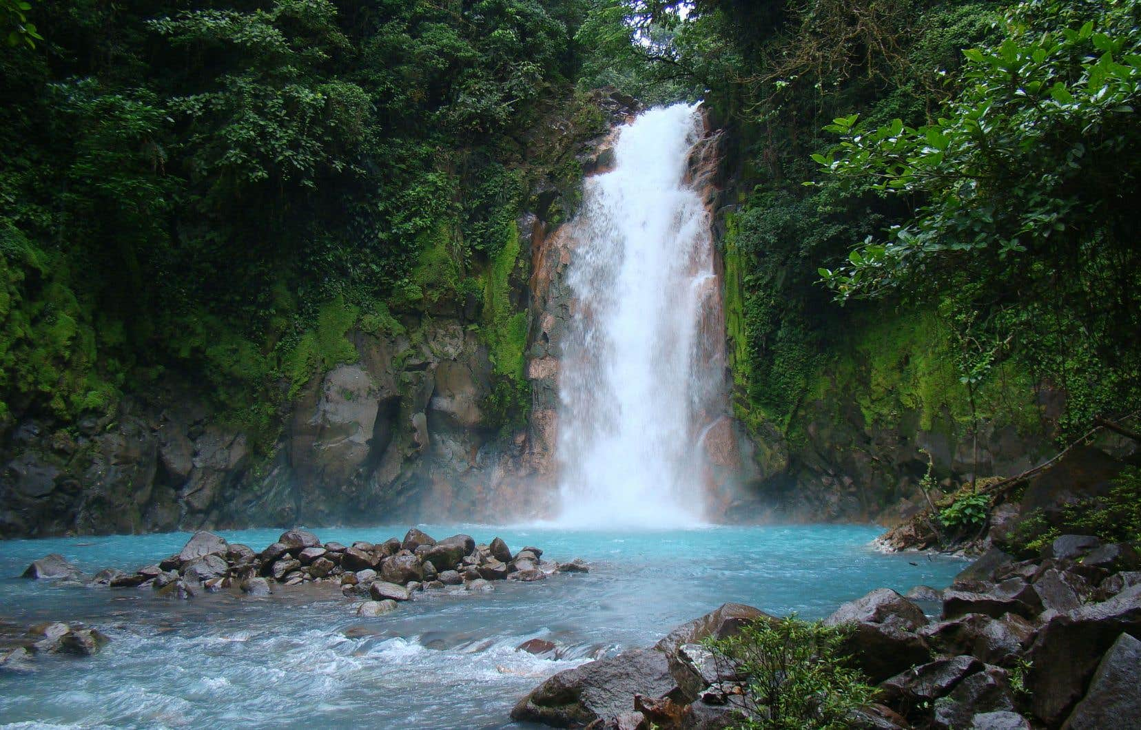 Le Costa Rica abrite à lui seul 6% de la biodiversité mondiale.