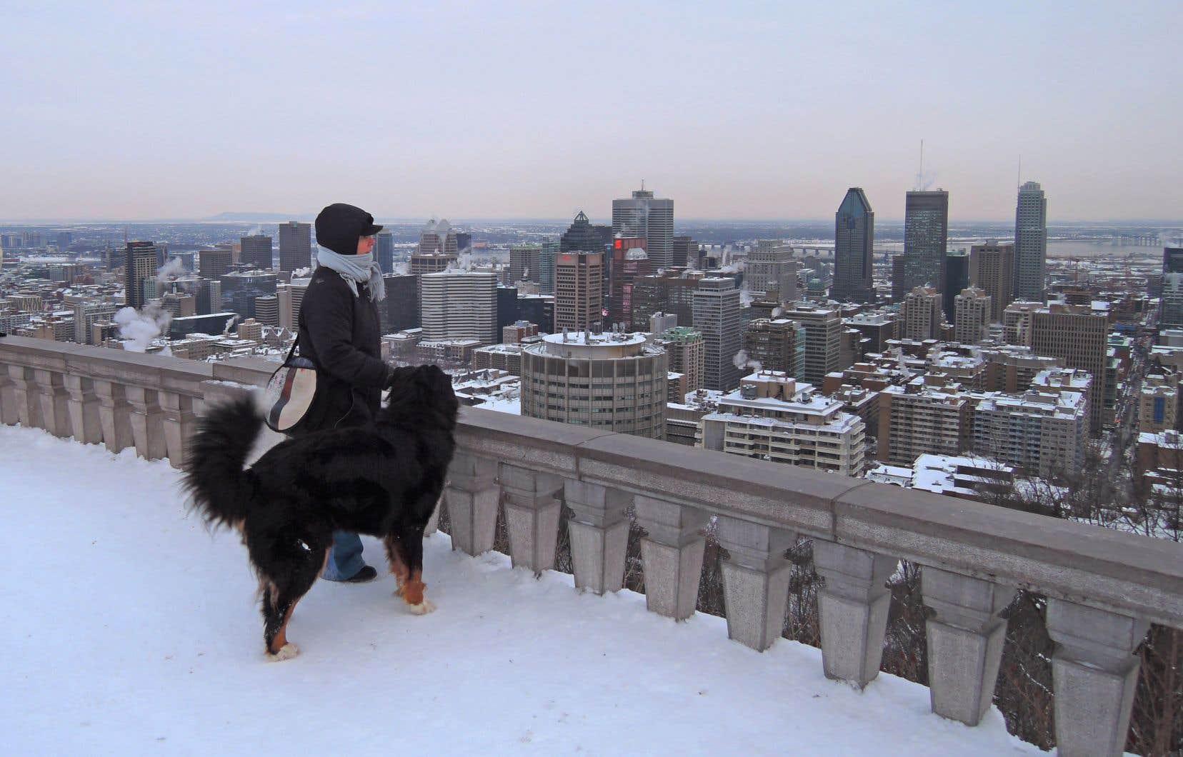 Le Grand Montréal aurait atteint l'état de surchauffe, mais une flambée des prix n'apparaît pas au radar.